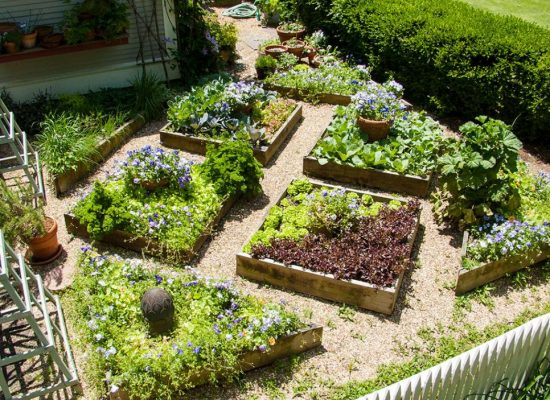 Garden Design With Small Space